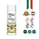 PROPOLI | Propoli Puro + Miele + Vitamina C + Timo + Echinacea | Protegge le difese | Antibiotico e antibatterico naturale | Antinfiammatorio, disinfettante e cicatrizzante | 120 compresse masticabili