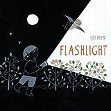 Flashlight: (Picture Books, Wordless Books for Kids, Camping Books for Kids, Bedtime Story Books, Children's Activity Books,