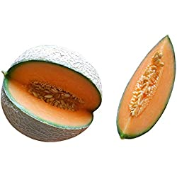 Melone Cantaloupe 10 Samen (Selten) Sehr Süß