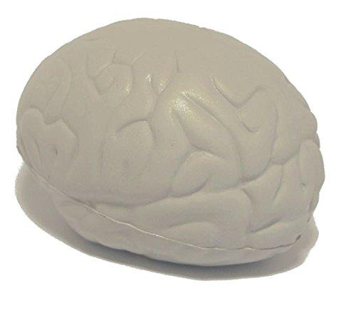 StressCHECK Pelota Anti Estrés - 1 x Cerebro Anti-Estrés - Bola...
