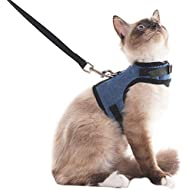 SCENEREAL Escape Proof Cat Harness and Lead - Adjustable Soft Mesh Vest Harness for Rabbits Puppy Kittens, Small
