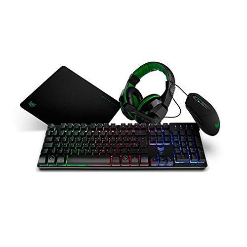BG X-4 - BGX4PCK - Gaming Setup