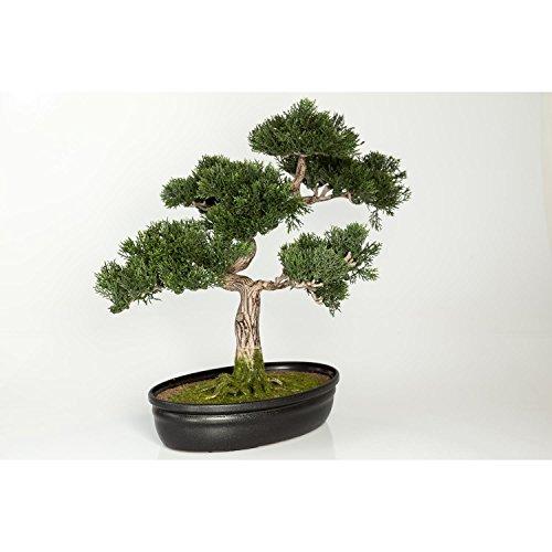 artplants Künstlicher Bonsai Zeder in Dekoschale, 230 Zweige, 40 cm – Hochwertiger Kunstbonsai Ceder