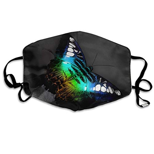 Zcfhike Anti Dust Pollution Mask Colorful Butterfly Print Reusable Washable Earloop Face Mouth Mask for Men Women