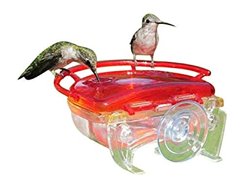 "2 Wild Garden Bird unique du suif Pellet Feeder 11/"" en plastique 2 perche Easy Fill Clean"