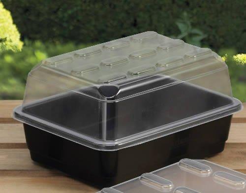 Garland Propagateur Budget Carton, sans trous de drainage