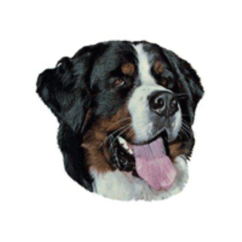 World Stickers Schwandt Heimtierbedarf 13010 Aufkleber 2 Stück ca. 140 x 160 mm für Warnschild Berner Sennenhund -