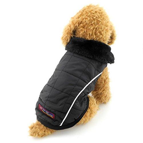 ranphy Kleiner Hund Katze Fleece Gefütterte Jacke Wasserdicht Winter Weste Coat Chihuahua Bekleidung Puppy Pet kaltem Wetter Coats -