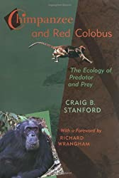 Chimpanzee and Red Colobus: The Ecology of Predator and Prey