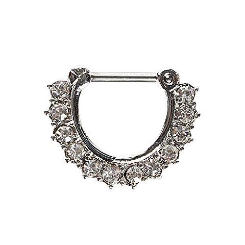 Bodya 18g Noir/argent en acier inoxydable à charnière Segment Clicker CZ Anneaux de nez Cristal Piercing Cintre Clip sur Bijoux de corps - silver