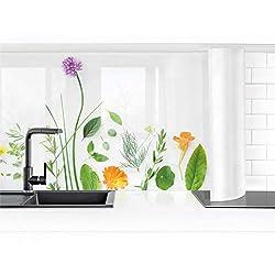 Bilderwelten Küchenrückwand Folie selbstklebend - Kräuter und Blüten 50 x 400 cm Smart