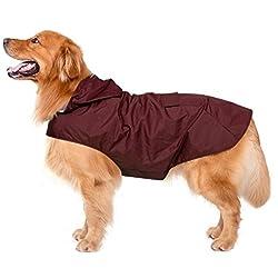 Chubasquero para perros con capucha y collar