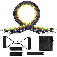 TZSUNRISE 11 Piezas Bandas de Resistencia, 100lbs Conjunto de Tubos de Ejercicios Adecuado para Fitness, Fuerza, Pérdida de Peso, Yoga, Equipo de Fitness para El Hogar