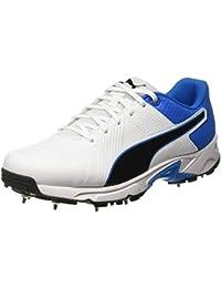 Puma Men's Spike 19.2 Cricket Shoes