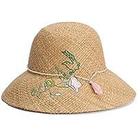 LBY Sombrero De Paja Señoras Bordado De Corea Borla De La Perla De La Flor Decorativa Cúpula del Sombrero Protector Solar Visera Sombrero Sombreros de Sol (Color : Beige, Tamaño : 56-58cm)
