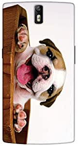 Timpax protective Armor Hard Bumper Back Case Cover. Multicolor printed on 3 Dimensional case with latest & finest graphic design art. Compatible with One Plus One ( 1+1 ) Design No : TDZ-25157
