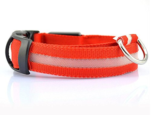 Seturrip - Nylon-LED-Haustier-Hundehalsband, Nacht-Sicherheits-Blitzen-Glühen im dunklen Hundeleine, Hunde Luminous Fluorescent Halsbänder Pet Supplies [L Collar Red]