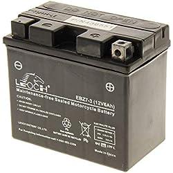 McCulloch 532436551 Batterie Autoportée
