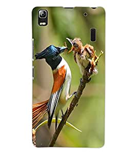ColourCraft Bird Design Back Case Cover for LENOVO K3 NOTE