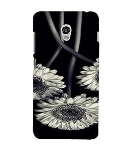 PrintVisa Flower Design 3D Hard Polycarbonate Designer Back Case Cover for Lenovo Vibe P1