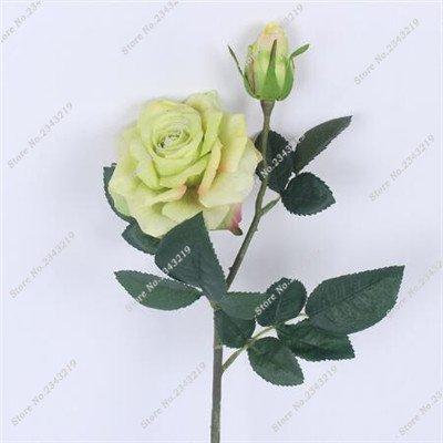 Exotique Miniature Bonsai Fleur Rose Rosas Graine Bricolage jardin et maison embellissant de purification d'air 110 Pcs/Sac 17