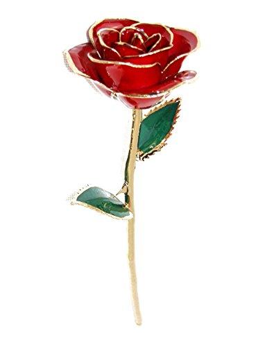 ZJchao sumergido de tallo largo 24K oro rosa Foil Trim, el mejor regalo para el día de San Valentín, Día de la madre, aniversario, regalo de cumpleaños