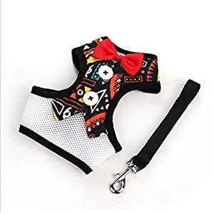 Leashes Hundeleine, Kleine Hund Weste, Brustgurt, Pet Supplies