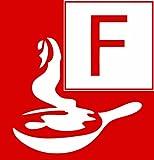 ABUS Feuerlöschspray FLS580 für den Haushalt | Schaum-Spraydose | 4 Meter Sprühweite | Brandklassen A - B - F  | 58824 Test