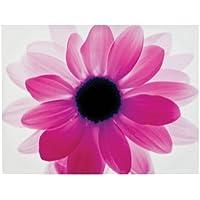 Premier Housewares Floral Canvas Print, 115 x 88 cm - Hot Pink