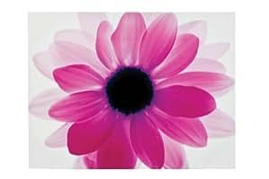 """Premier Housewares Toile imprimée """"fleur"""" Rose 115 x 88 cm"""