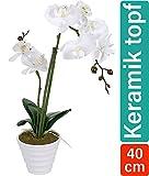 Praknu Künstliche Orchidee Weiß mit Topf 40cm Hoch - 2 Rispen - Echt Wirkend - Flexibel