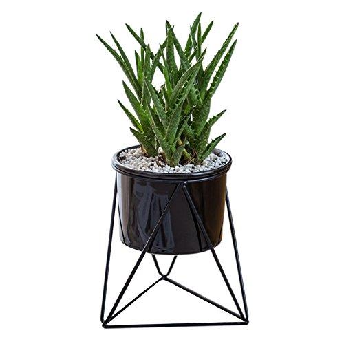 Fastar Geometrische Wand Decor Behälter zum Aufhängen Übertopf Vase Sukkulente Green Plant Eisen Rahmen Keramik Blumentopf Vase für Sukkulenten, Air Pflanze, Mini Kaktus, Black Pot + Black Frame, Black pot + Black frame