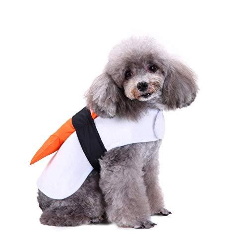 Hunde Pop Star Kostüm - WINNER POP Halloween Sushi Pet Kostüm,