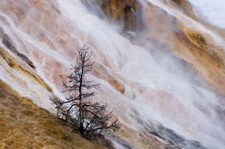 Feelingathome-STAMPA-ARTISTICA_x_cornice-Wyoming-Mammoth-Hot-Springs-cascata-cm48x74-arredo-POSTER-fineart