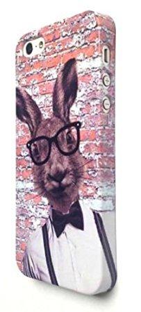 Coque pour téléphone portable iPhone 55S se 66S 6Plus Hipster Lapin Lièvre Cool Brique Mur Motif Funky, plastique, iPhone 5 5S SE