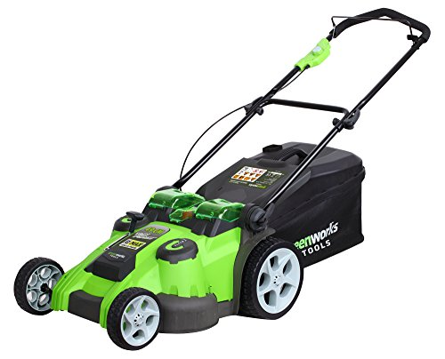 Greenworks Tools 2500207