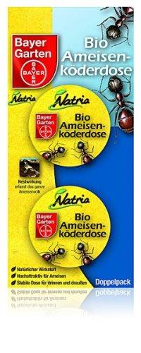 Bayer Bio-Ameisen Köderdose 2 Stück