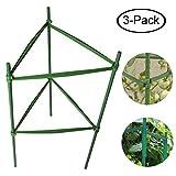 F.O.T sturdy Garden supporto per piante paletti 3-sets gabbia per piante di pomodori piante, 0,6m lungo in acciaio con rivestimento in plastica, con asta di collegamento