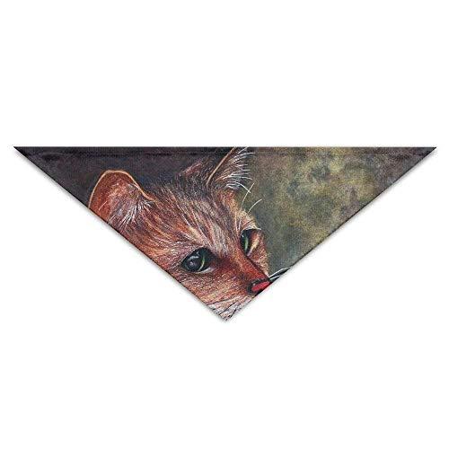 Hectwya Katzen, die Kunst-Hundebandana-Lätzchen Welpen-Katzenkopf-Schal-Zubehör malen (Rot Tmnt Kostüm)
