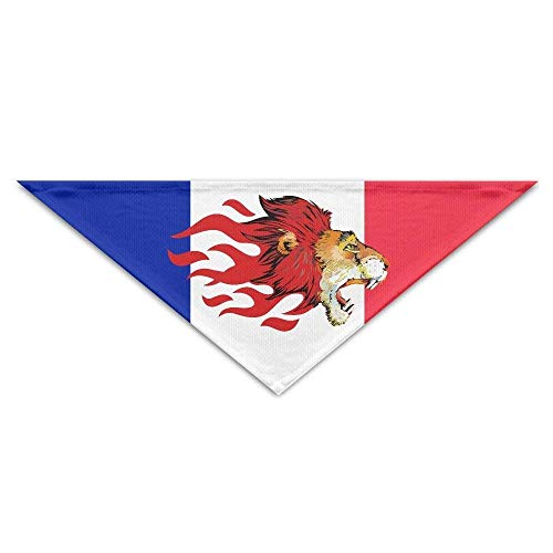 Kostüm Coole Hausgemachte - Sdltkhy Lion Head Cool Triangle Pet Scarf Dog Bandana Pet Collars Dog Cat - Birthday