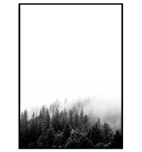 Kunstdruck / Poster WALD DIN A4 ungerahmt Tannen, Nebel, Bäume, skandinavisch, nordisch Poster zur Deko im Büro / Wohnung / als Geschenk Mitbringsel zum Geburtstag etc.