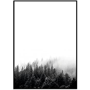 Kunstdruck / Poster WALD DIN A4 ungerahmt Tannen, Nebel, Bäume ...