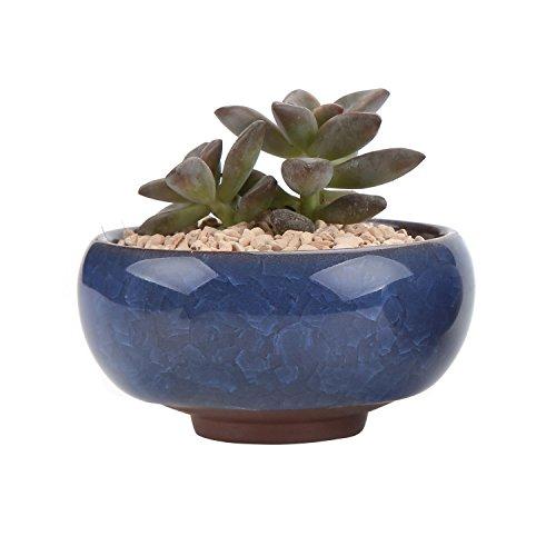 t4u-65cm-ceramic-ice-crack-zisha-serial-sucuulent-plant-pot-cactus-plant-pot-flower-pot-container-pl