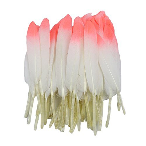 D DOLITY 12 Stück Schöne Natürliche Naturfedern Gänsefedern Echte Gänsefedern Bastelfedern Schmuckfedern Zierfedern - weiße Wassermelone ()