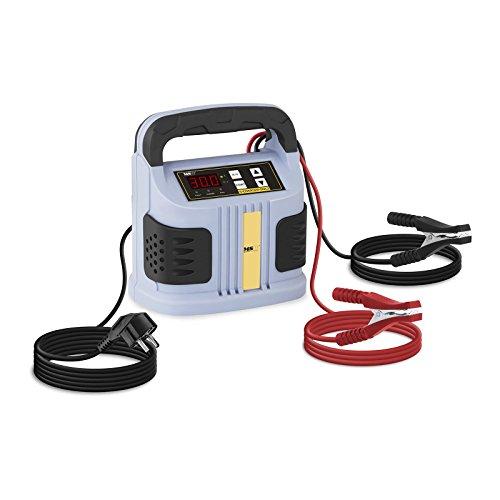 MSW S-CHARGER-50A.2 Avviatore di Emergenza per Auto Caricabatterie Mantenitore di Carica (6/12/24V, A 20-300 Ah, 230 V, 0,75 kW, Display a LED per batterie al Piombo Acido, Grigio)