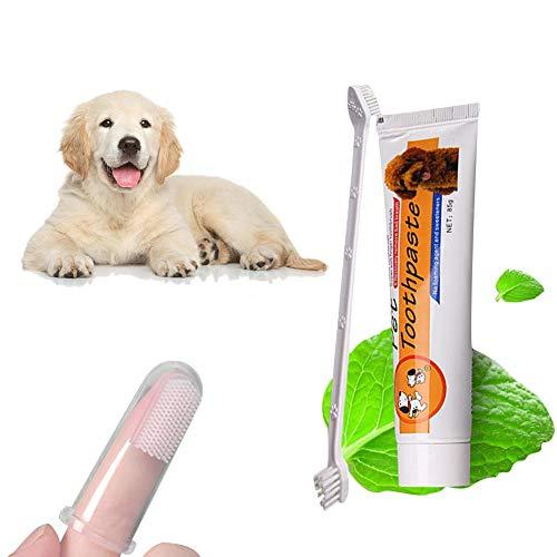 Kit de cuidado dental oral para perros El veterinario veterinario del perro y el gato Cepillo de dientes para mascotas Kit de cuidado oral para perros Kit de pasta dental para perros Limpieza de los