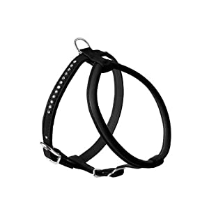 Hunter Modern Art Round and Soft Petit Luxus Harness, Small, Black