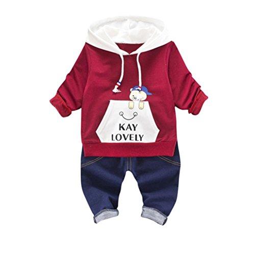 Janly 2pcs kleinkind kleinkind kinder baby jungen mädchen kapuzen - tops + hosen outfits kleidung setzen (3T, Wein) Kapuze Hose Top