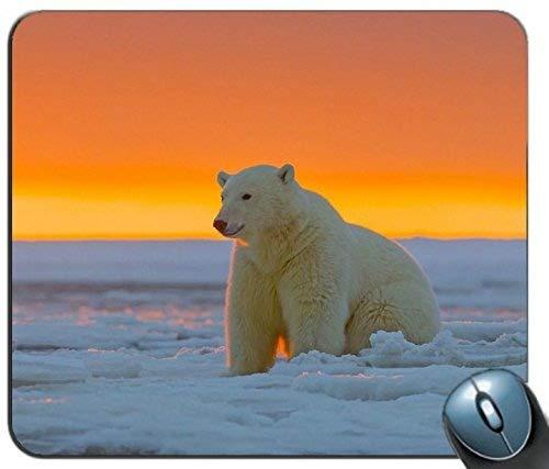 Mauspad, Eisbär Alaska Schnee 105367 Personalisierte Rechteck Mauspad, Gedruckt Rutschfeste Gummi Komfortable maßgeschneiderte Computer Maus Pad -