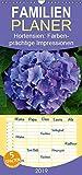 Hortensien – Farbenprächtige Impressionen aus dem Garten - Familienplaner hoch (Wandkalender 2019 , 21 cm x 45 cm, hoch): Wunderschöne ... (Monatskalender, 14 Seiten ) (CALVENDO Natur)